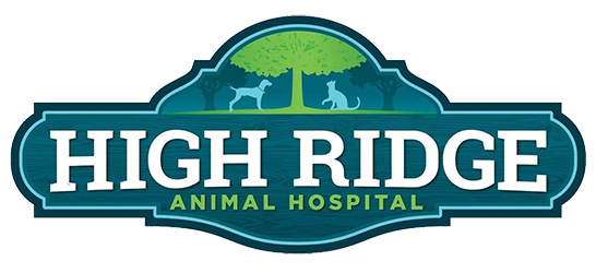 Veterinarians in High Ridge, MO | High Ridge Animal Hospital